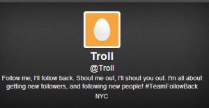 2013-07-02 16_06_17-Troll (Troll) on Twitter